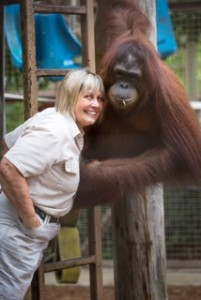 Jungle Island_Orangutan mama Linda Jacobs