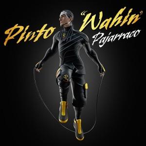 Pinto Wahin
